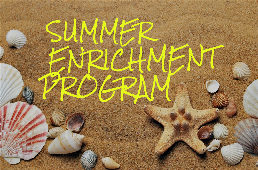 Summer Enrichment Program on beach background